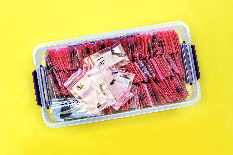 Hasta la fecha se han extraído más de 195,000 fragmentos, desde pequeñas agujas de fibra de carbono hasta componentes electrónicos reconocibles