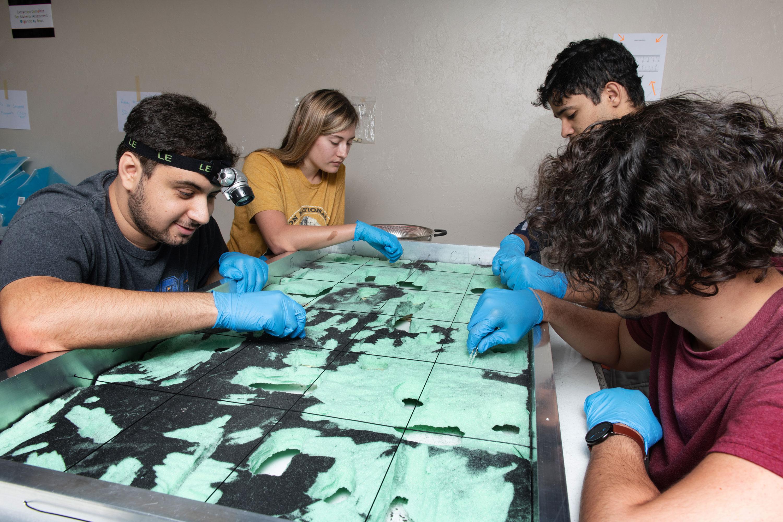 Los estudiantes extraen fragmentos de las tablas de espuma con unas pinzas.