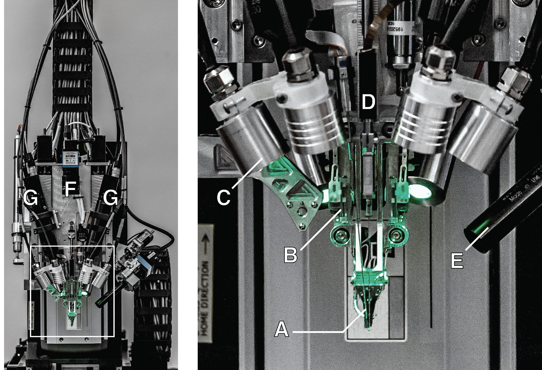 Un robot desarrollado por Elon Musk.