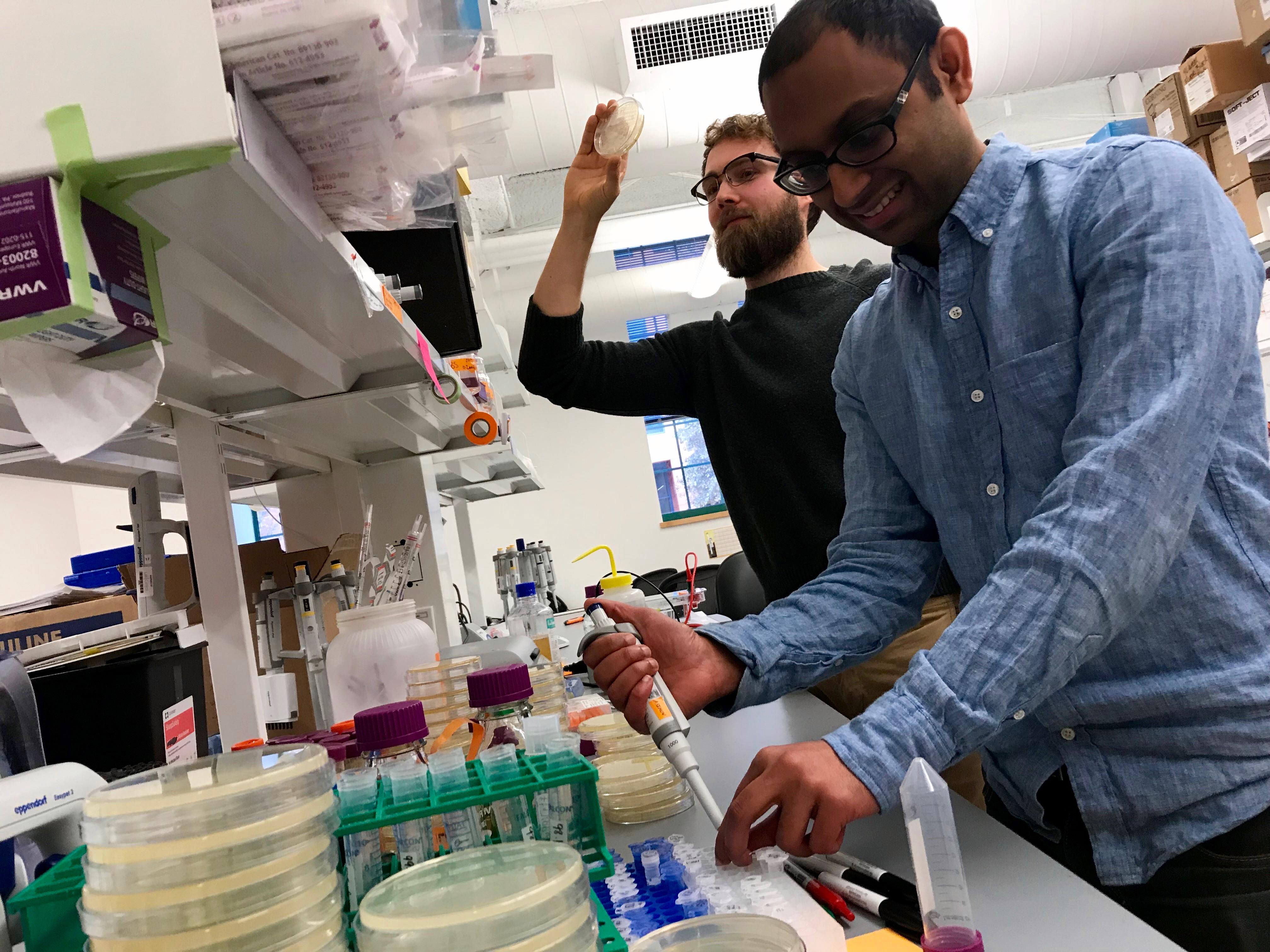 Alec Nielsen (a la izquierda) y Raja Srinivas están entre los fundadores de una startup que intenta acelerar la ingeniería de microorganismos.