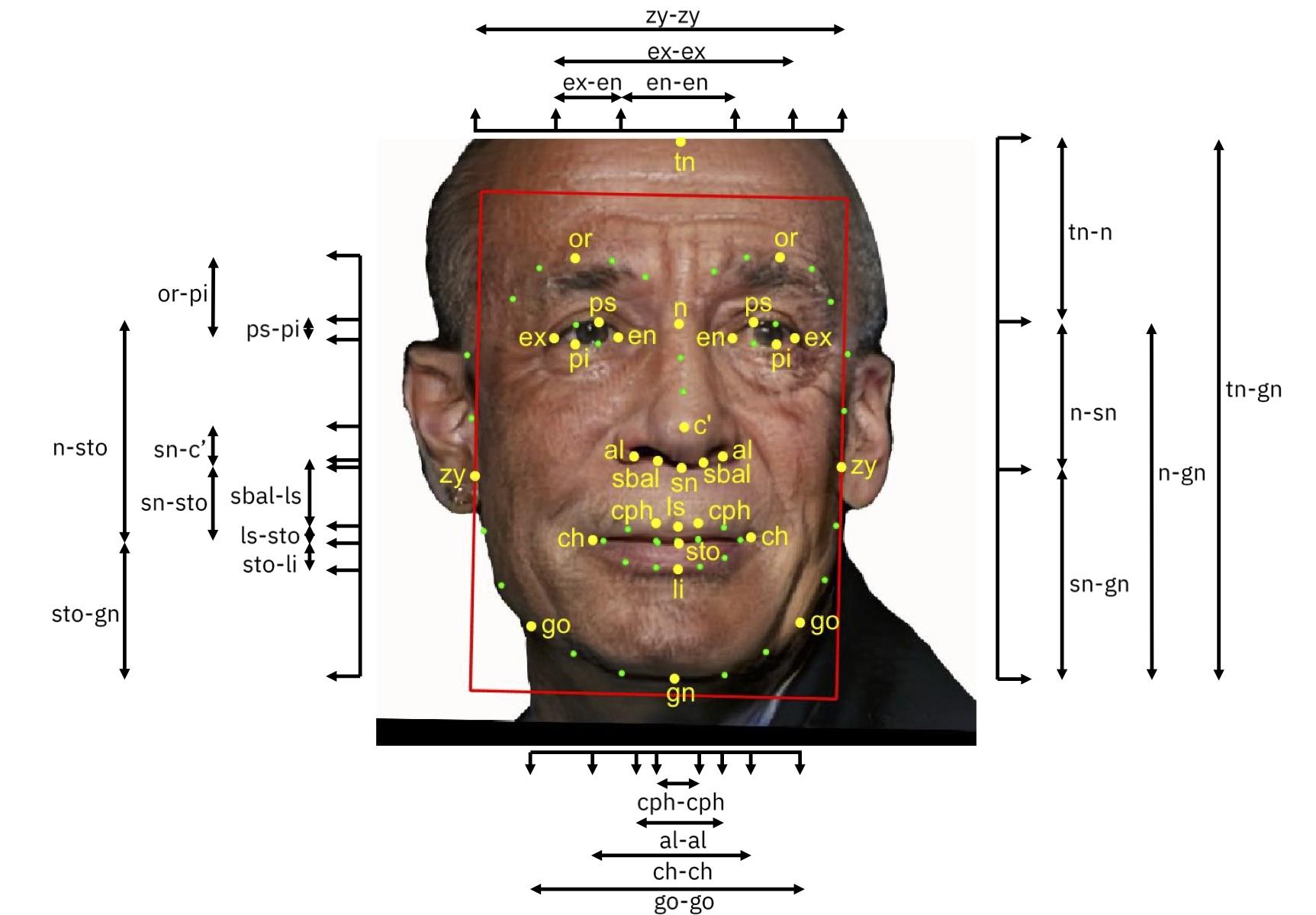 Diferentes medidas de diversidad facial, presentadas en IBM Research.