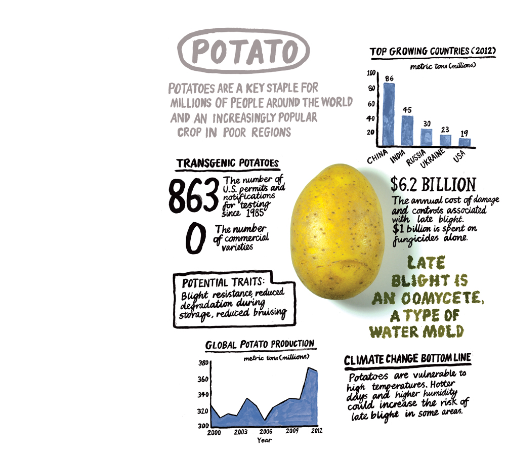 why we will need genetically modified foods   mit technology