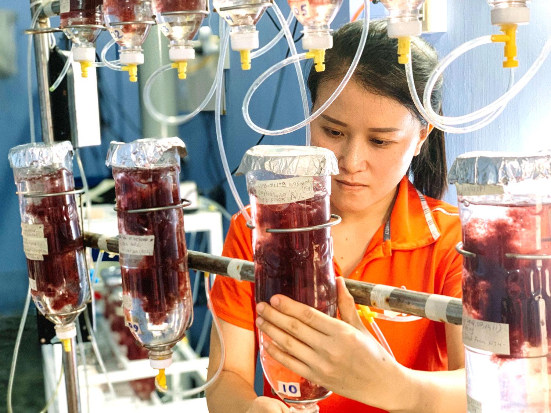 Huynh Thi Khanh trabajando en el banco de semillas de Greener Grazing.