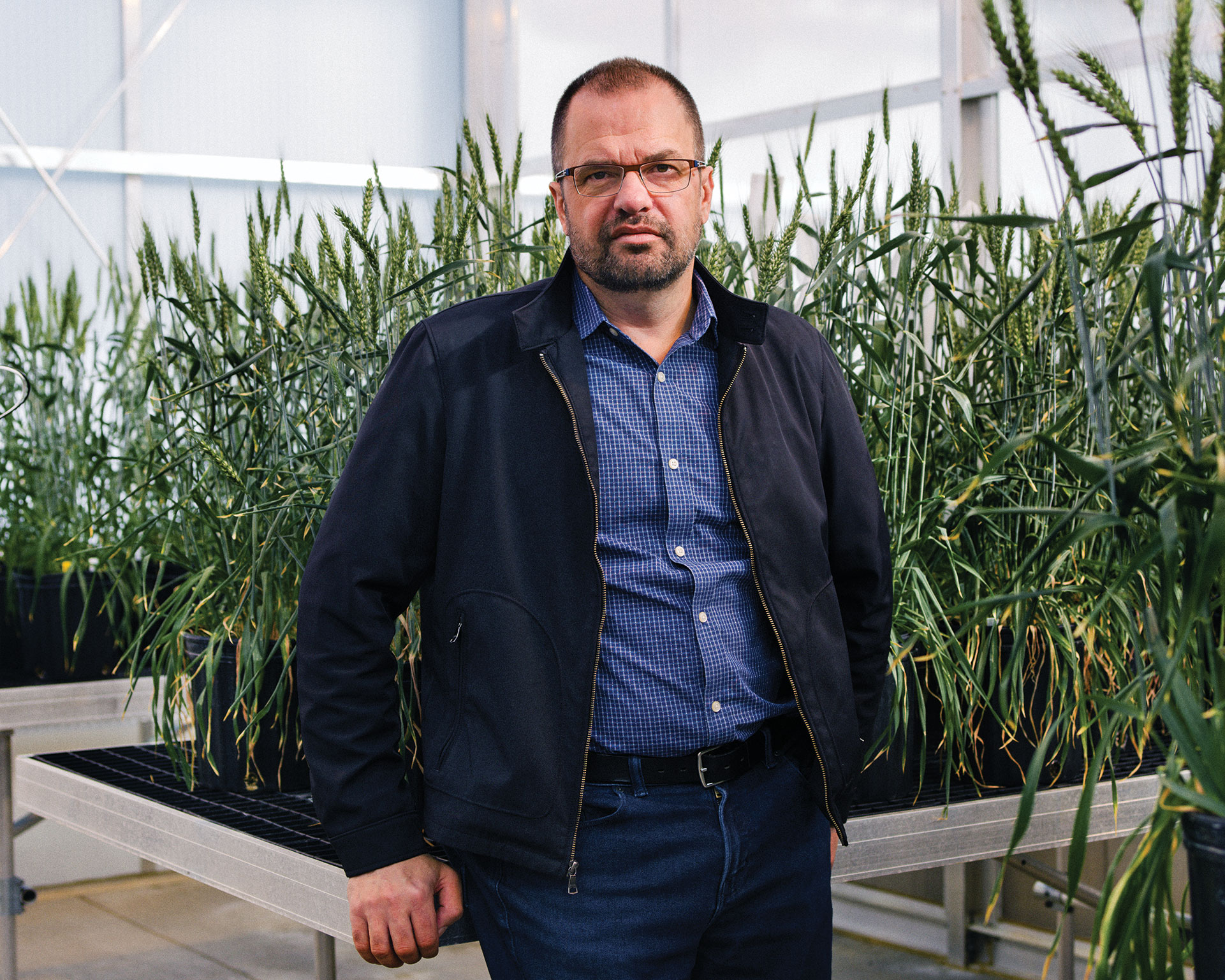 """El genetista Dan Voytas de la Universidad de Minnesota desarrolla nuevas plantas usando ingeniería genética. """"El genio está fuera de la botella"""", dice."""
