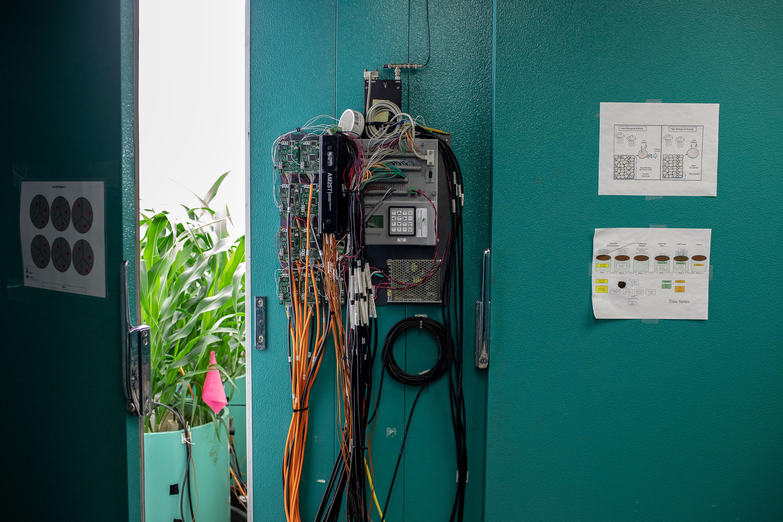 Las plantas en la cámara serán monitoreadas de cerca por un conjunto de sensores. Los científicos del USDA miden cómo cada planta lo hace bajo las diversas condiciones.