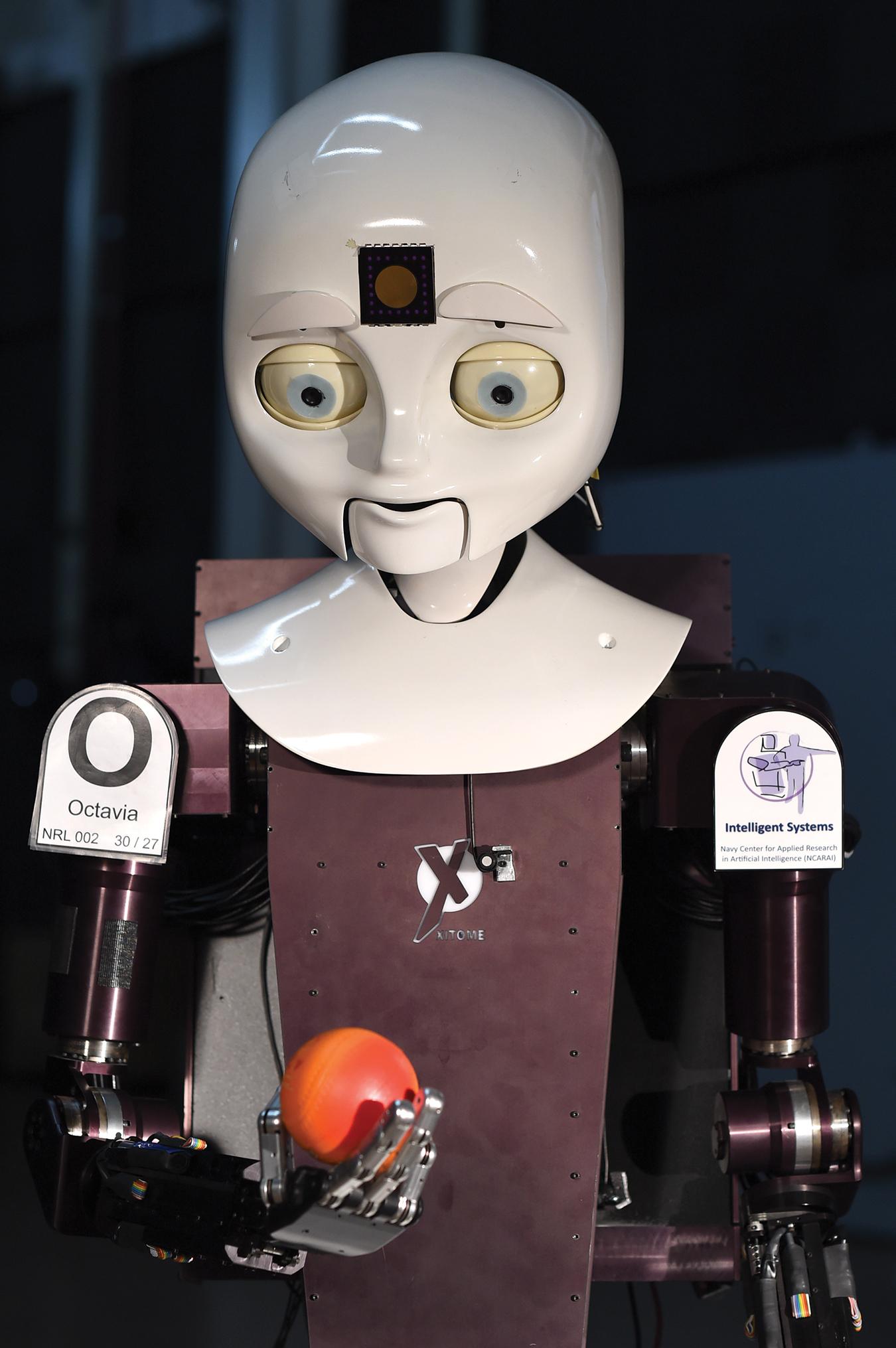 El Octavia es capaz de transmitir expresiones, pero resulta que las expresiones faciales no son necesarias para que las personas se sientan emocionalmente apegadas a sus robots.