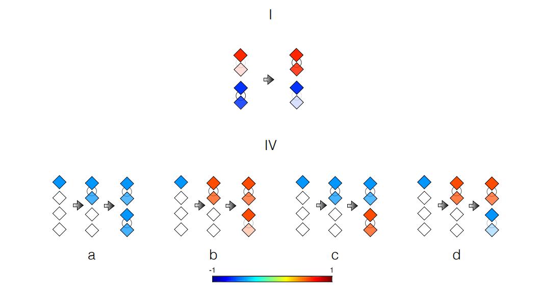 El proceso de evolución cuántica y la creación de la vida cuántica artificial
