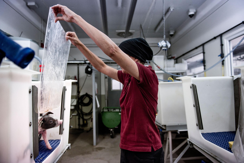 La veterinaria Barbara Kessler muestra sus instalaciones