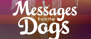 Messages from the Dogs Oracle Deck Logo