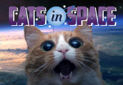 Ad for CATS IN SPACE