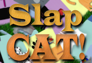 Ad for SlapCAT