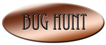 Bug Hunt Logo