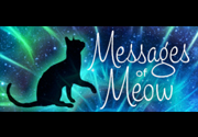 Ad for Messages of Meow Oracle Deck