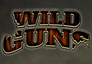 Ad for Wild Guns