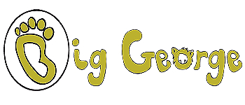 Big George Memory Card Game Logo