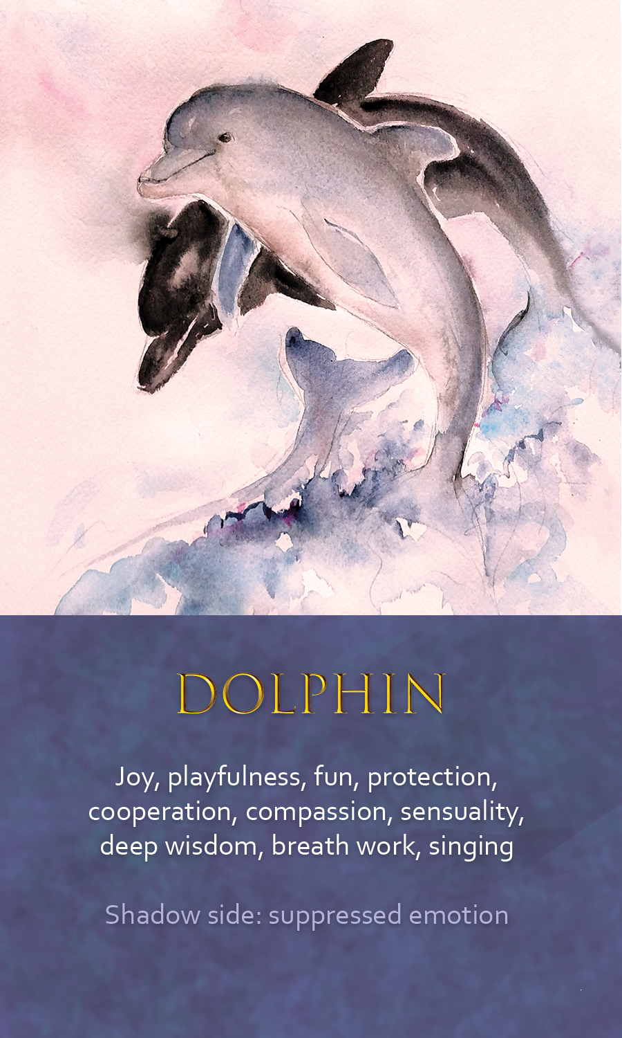 Dolphin Spirit Animal Totem Meaning Famous Dolphin 2018