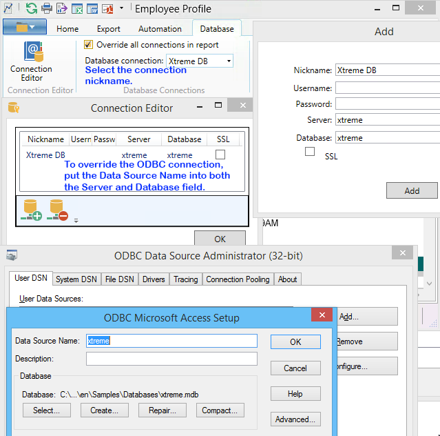 Screenshot of The Report Viewer Connection Editor and Windows 32-bit ODBC Database Administrator