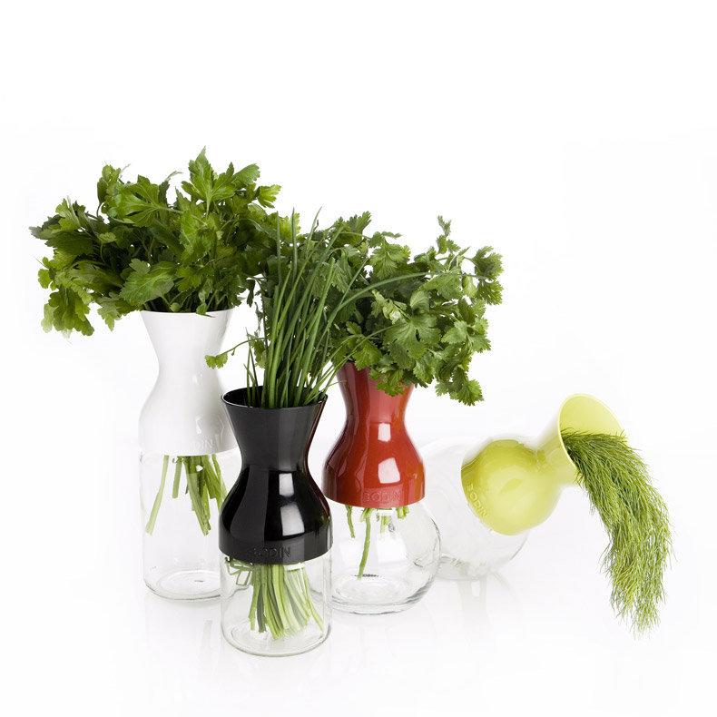irmi transforme les pots en vase id 233 al pour conserver les fines herbes au frigo lapadd