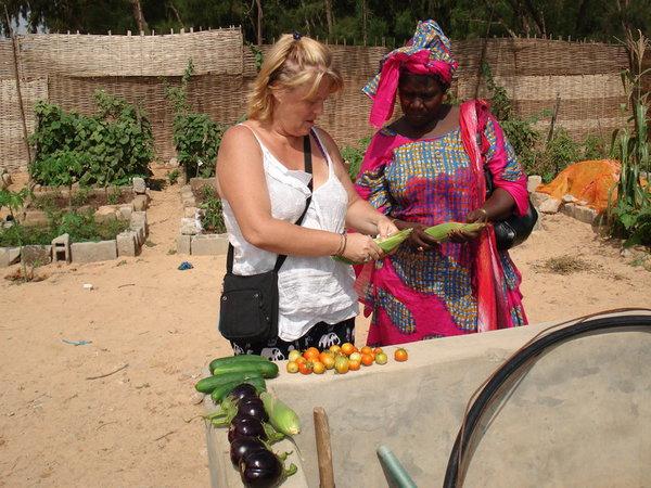 Modele De Lit En Bois Au Senegal : de 400 ? 1500 les s?n?galais ont la chance d avoir de l eau