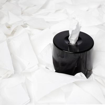News - Devidoir de papier toilette ...