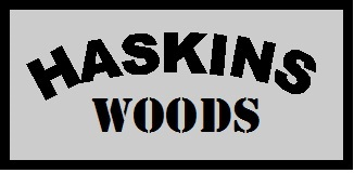 Haskins Woods Vermont Homes for Sale