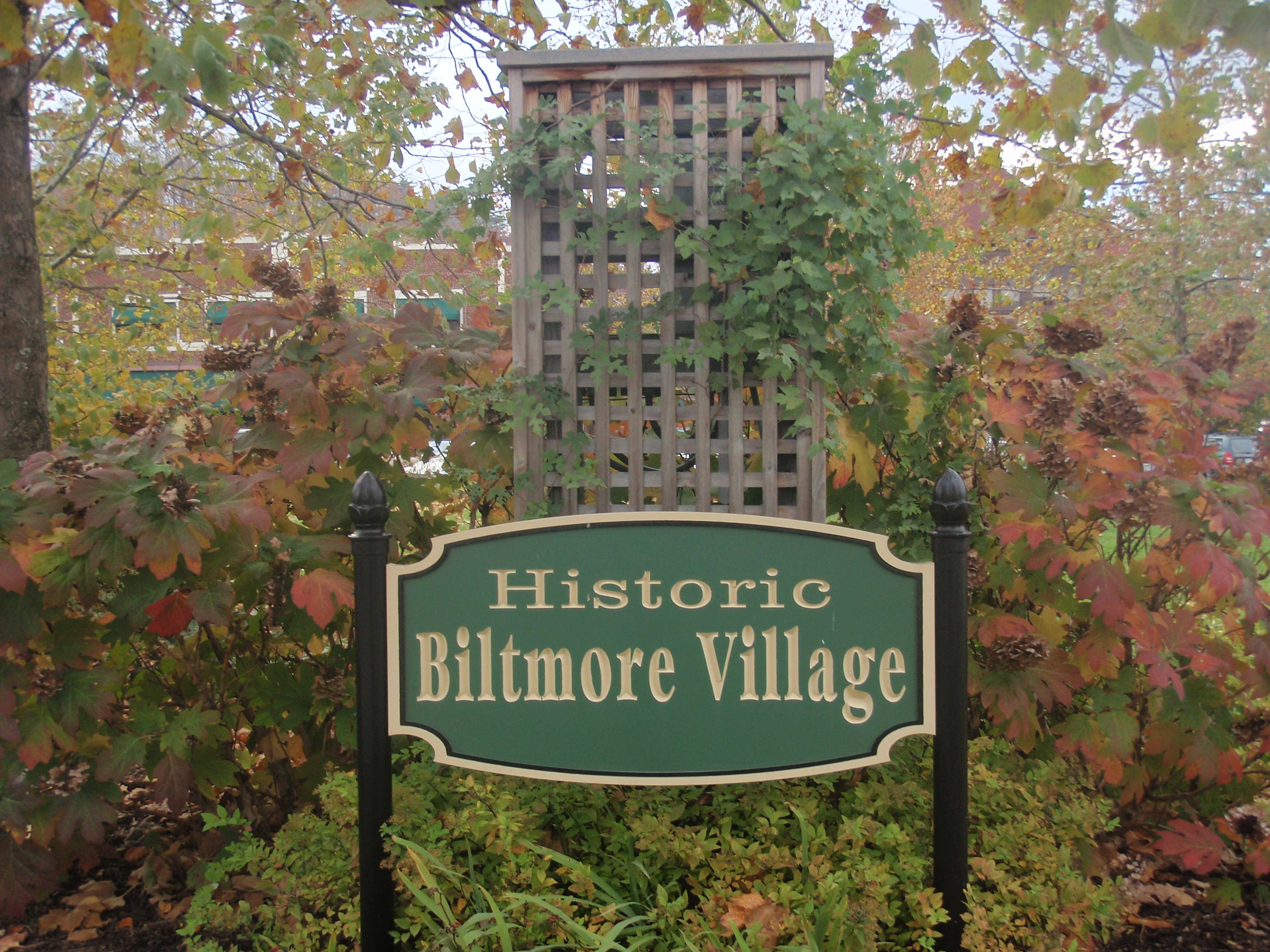 Biltmore Village Homes