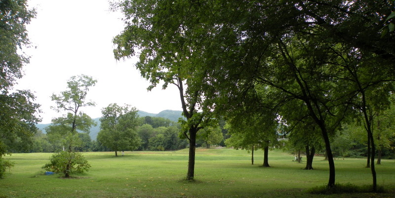 Biltmore Park Homes