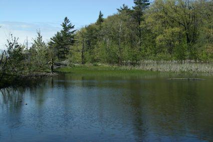 Addison VT Lake