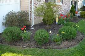 mulch and plant