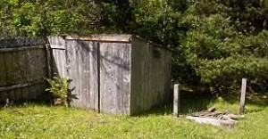 shed needs painting