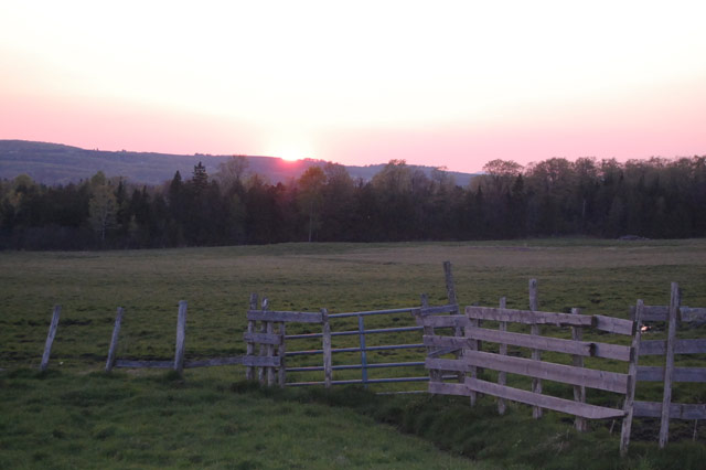 Large Tract of Land Northern VT