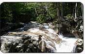 NH River Rapids