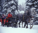 Winter Sleigh Ride, Eaton, NH