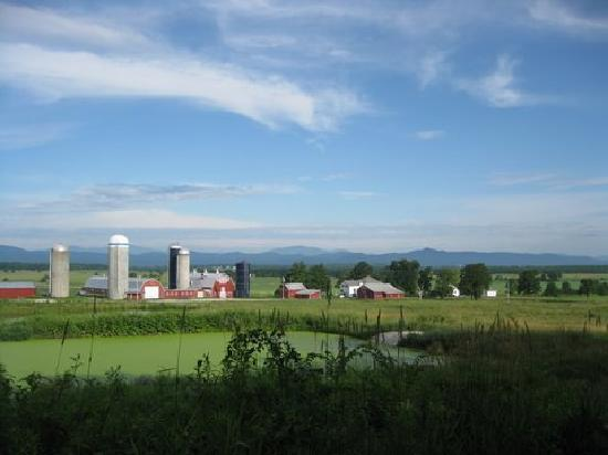 Bridport VT Farms
