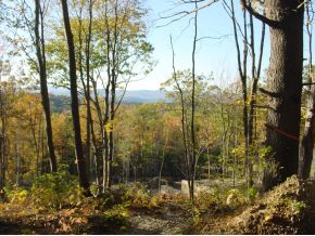 NH Property for Log Home