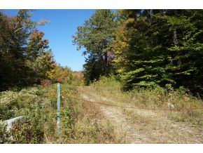 Private NH Property