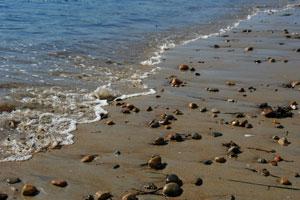 Swampscott MA Beach
