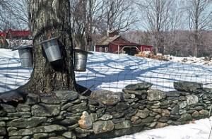 Visit Vermont sugarhouse