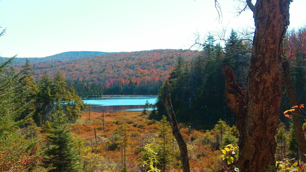 Beebe Pond, Stratton, Vermont