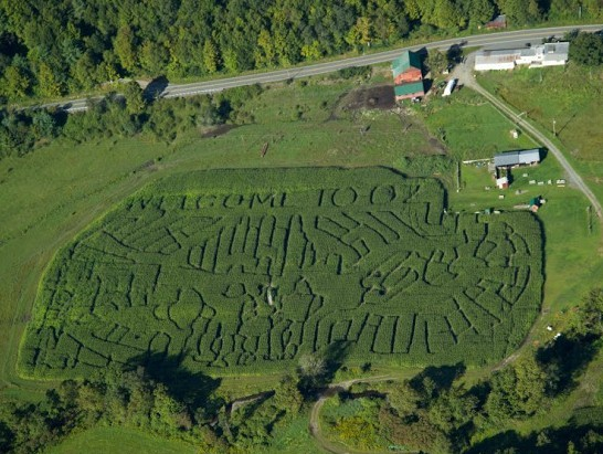 Fall Activities Corn Maze in Vermont
