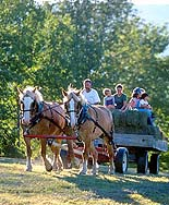 Mad River Valley farm tours