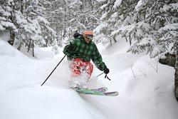 NH Skier