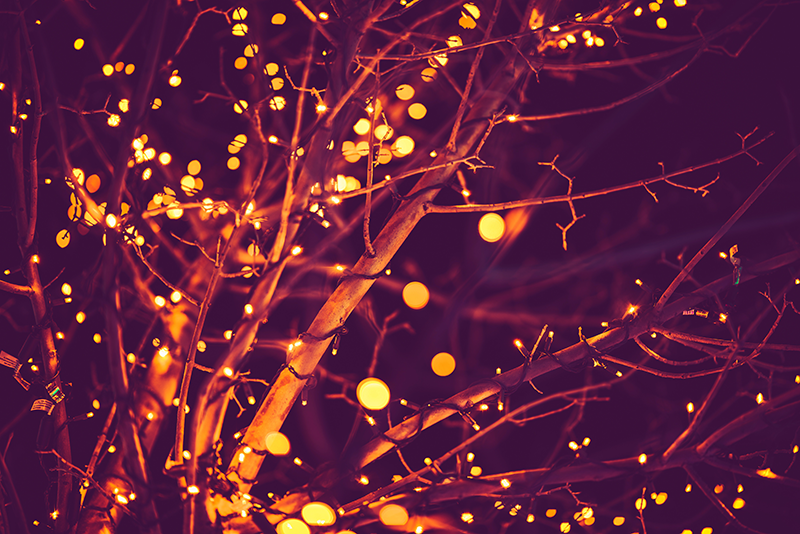 Holiday_lights