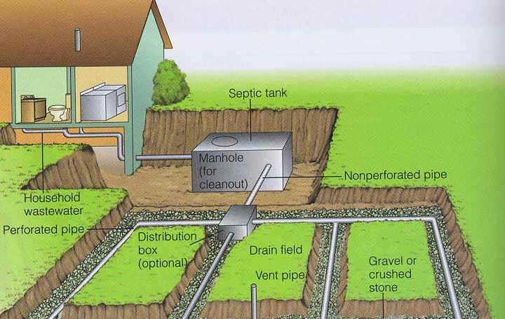 Septic System Anatomy