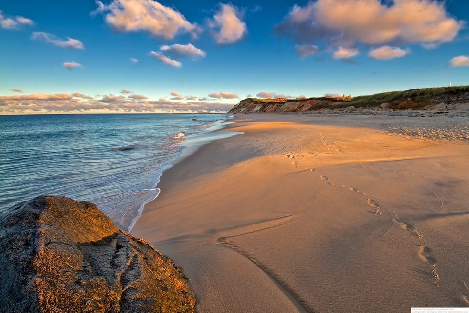 Martha's Vineyard Beaches