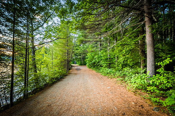 New Hampshire Hiking Trails located next to a body of water