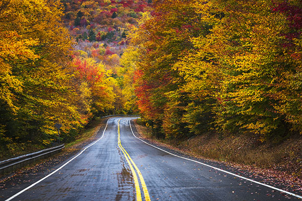 Country Road in New Hampshire