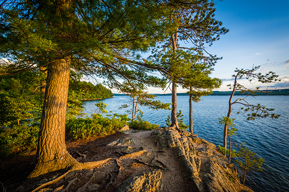 A New Hampshire Lake as seen by the shore through the trees