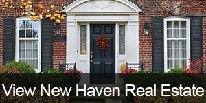 New_haven_ct_real_estate
