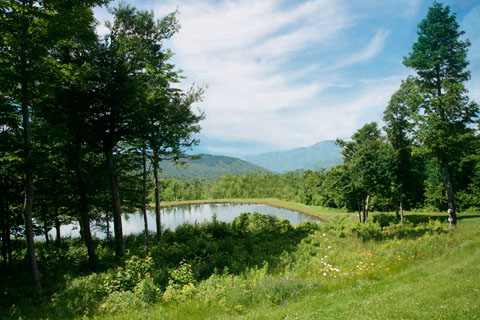 Southern Vermont Large Acreage Real Estate